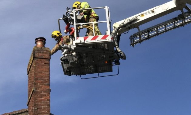 Fire crew deploys cherry-picker to free stricken bird trapped in chimney