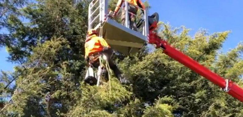 Suspended Spider Work
